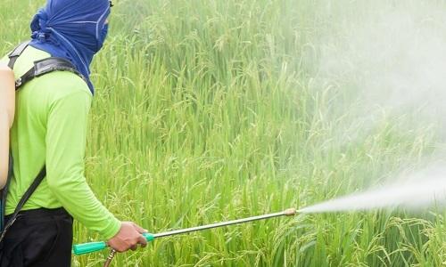 Reanjoy Laboratories | Chemical - Environmental Testing