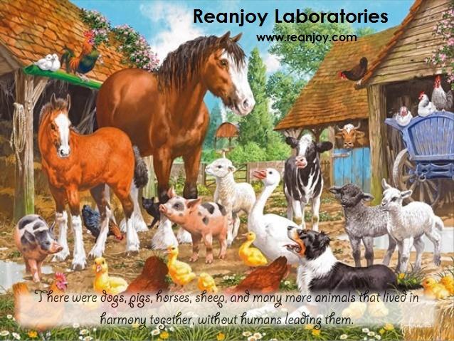animal-farm-childrens-book-4-638