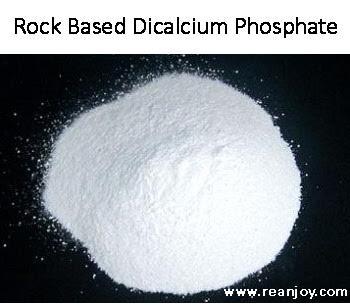 rock-based-dicalcium-phosphate-2